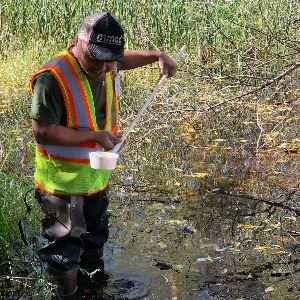 Mosquito Control Agent Treating Water Body